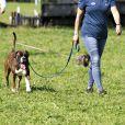 Zara Tindall et son mari Jason Wood au Cornbury House International Horse trials dans le Oxfordshire, le 13 septembre 2020