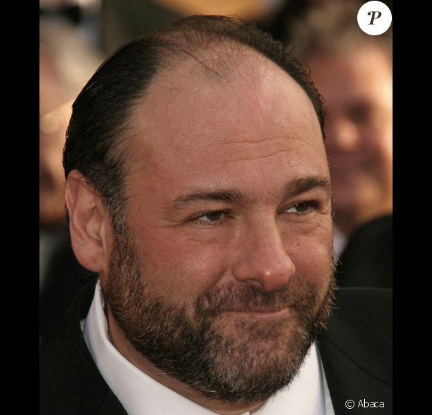 James Gandolfini retrouve le réalisateur Tony Scott et tiendra le rôle de maire de New York