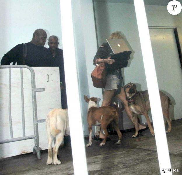 Courtney Love arrive avec ses chiens à Miami Beach et tente de se cacher derrière son ordinateur portable en juillet 2010
