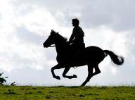 War Horse : Les premières images du nouveau film de Steven Spielberg !