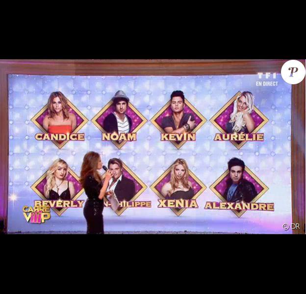 Candice, Noam, Kevin, Aurélie, Beverly, Jean-Philippe, Xenia et Alexandre sont les 8 Wanna-VIP de Carré ViiiP.