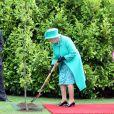 Mardi 17 mai 2011, la reine Elizabeth II entamait une visite de quatre jours en République d'Irlande jalonnée de signes forts de réconciliation, dans des conditions de sécurité drastiques, 100 ans après la dernière visite d'un monarque britannique (George V) et en vue de sceller la réconciliation du royaume et de son ancienne colonie. D'où sa tenue aux couleurs du pays hôte.