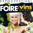 Bob Sinclar, Martin Solveig, Yodelice, Zaz, Ben l'Oncle Soul, Yannick Noah, Gaëtan Roussel, Moby et Eddy Mitchell seront de passage à la foire aux vins de Colmar du 6 au 14 août 2011.