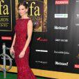 Hilary Swank, magnifique dans sa robe Elie Saab Couture le 25 juin 2011 à Toronto pour l'International Indian Film Academy Awards