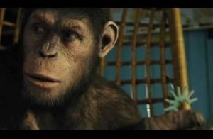 La Planète des singes - les origines : Un extrait bluffant et très inquiétant