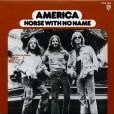 America,  Horse with no name