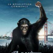 Les singes mettent la pâtée à Ryan Reynolds et Blake Lively