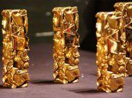 César 2012 : La fameuse cérémonie aura lieu le...