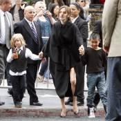 Angelina Jolie : Son fils ne veut plus être vu, il se transforme en requin