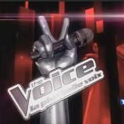 The Voice arrive sur TF1 le 25 février !