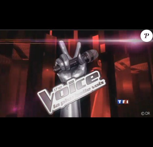 The Voice, futur télé-crochet de TF1