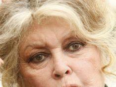 Brigitte Bardot encore condamnée par le tribunal correctionnel...