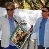 Siegfried et Roy : Ils sont timbrés des tigres, malgré le terrible accident