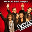 Les coachs de  The Voice  version française (TF1)