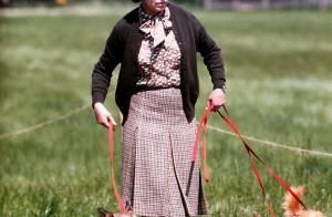 La princesse Beatrice choquée : son chien Max presque tué par les corgis royaux
