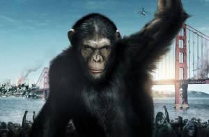 La Planète des singes : Le réalisateur quitte la suite, la Fox dans la tempête ?