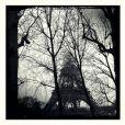 Nikos Aliagas exposera certaines de ses photos au Studio Harcourt du 16 au 21 novembre 2012.