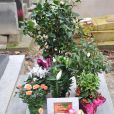L'inhumation définitive de Tsilla Chelton dans le cimetière du Père-Lachaise à Paris le 16 Novembre 2012