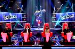 The Voice 2 : La fille de Michel Leeb, nouvelle victime des redoutables coachs
