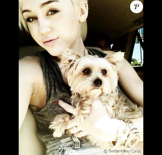 Miley Cyrus pose avec sa défunte petite chienne Lila, le 28 août 2012 sur son compte Twitter.
