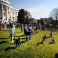 Traditionnelle chasse aux oeufs de la Maison Blanche, le 1er avril 2013.