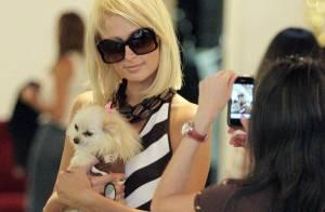 PHOTOS : Paris Hilton, entre chien et zèbre, mais tellement belle !