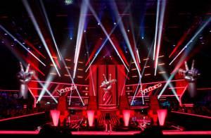The Voice Kids : Trois coachs pour la version enfants du concours télé ?