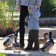 Exclusif - L'actrice Jennifer Garner et son fils Samuel donnent à manger aux canards dans un parc de Santa Monica le 10 décembre 2013.