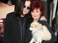 Ozzy Osbourne et sa femme : l'amour à mort...