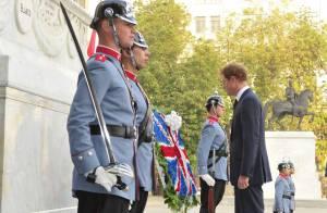 Prince Harry au Chili : Trois jours de ferveur populaire auprès des enfants