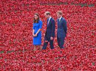 Kate Middleton, William et Harry : Émotion et beauté dans une mer de coquelicots