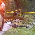 Molly Glynn a été tuée, vendredi 5 septembre 2014, après avoir été frappée par un arbre lors d'une promenade à vélo.