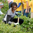 Michelle Obama dans le potager de la Maison Blanche, à Washington, le 14 octobre 2014