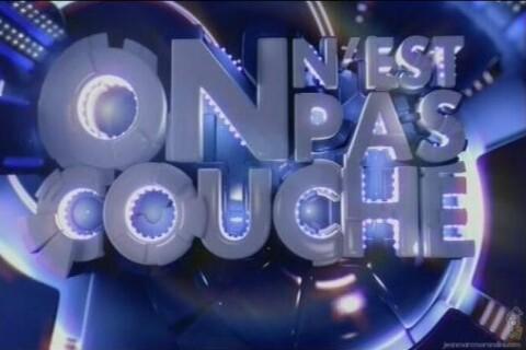 On n'est pas couché, TPMP, Salut les Terriens... Combien coûtent les talk-show ?