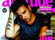 Liam Payne, ses propos jugés homophobes : La star des One Direction se défend