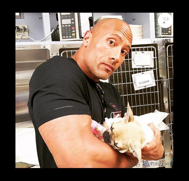Dwayne Johnson a rajouté une photo de son chien Brutus, qui vient d'être enthanasié sur sa page Instagram.
