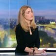 """""""Extrait du Journal de 20h de TF1 du 29 décembre 2015"""""""