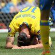 Zlatan Ibrahimovic à terre lors du match Italie - Suède cau Stadium de Toulouse. Toulouse, le 17 juin 2016. © Cyril Moreau/Bestimage