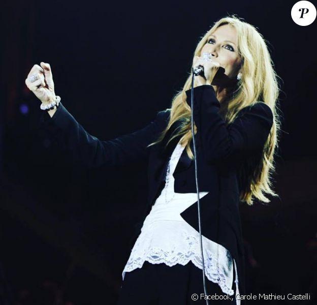 Céline Dion sur scène à Anvers, en Belgique. Facebook, juin 2016