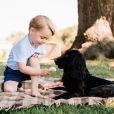 Le prince George de Cambridge, fils du prince William et de Kate Middleton, photographié par Matt Porteous avec Lupo dans le jardin d'Anmer Hall mi-juillet 2016. Portrait officiel diffusé le 22 juillet 2016 pour son 3e anniversaire. © Matt Porteous / Duc et duchesse de Cambridge, via Abaca