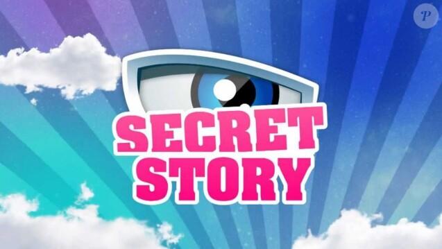 """""""Secret Story 7"""" : Une candidate enceinte de son premier enfant"""