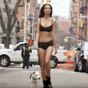Emily Ratajkowski : La bombe promène son chien en lingerie !
