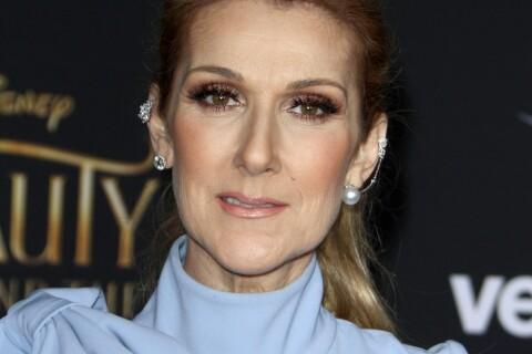 Céline Dion : Bouche bée par un fan, elle le fait monter sur scène...