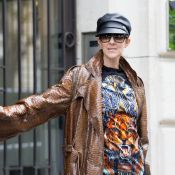 Céline Dion ose un look très surprenant... en python !