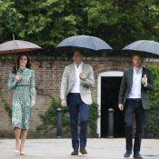 Lady Diana : William, Harry et Kate dans les jardins de Kensington, à sa mémoire