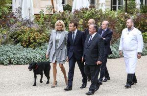Brigitte et Emmanuel Macron : Nemo s'incruste au Déjeuner des grands chefs !