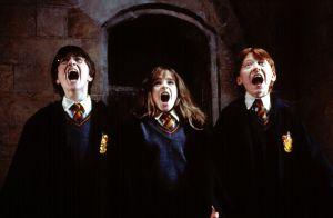 Harry Potter : Un acteur français au casting des