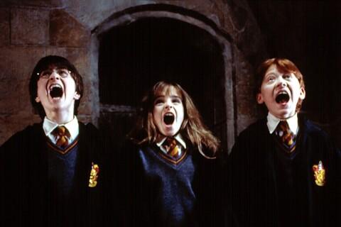 """Harry Potter : Un acteur français au casting des """"Animaux Fantastiques 2"""" !"""