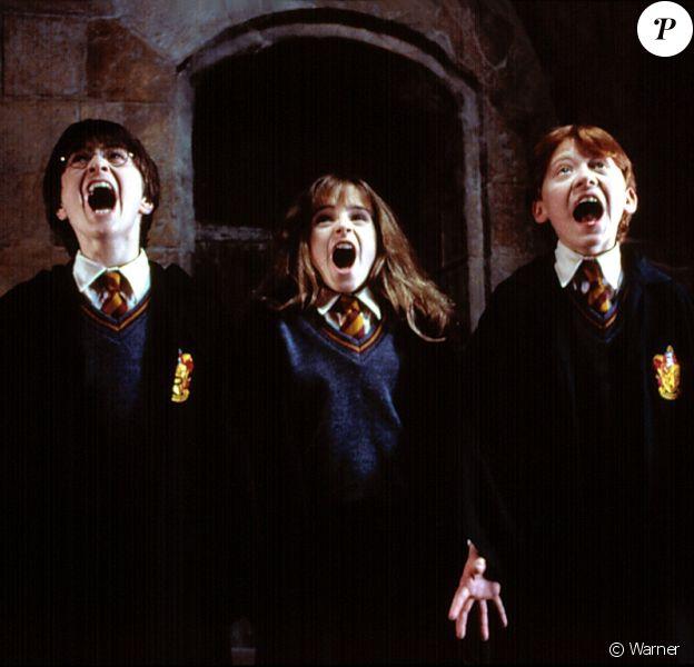 Harry Potter and the Sorcerer's Stone dans lequel le nom de Nicolas Flamel est cité.