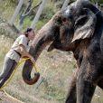 Exclusif - La Princesse Stéphanie de Monaco a ouvert les portes du domaine de Fontbonne au sommet du Mont Agel, dans les Alpes en France, le 12 juillet 2016, où elle a installé les deux éléphants, Baby et Népal. L'occasion de fêter le troisième anniversaire de leur nouvelle vie. Au programme jeu d'eau entre la princesse, Baby et Népal et balade. Le 12 juillet 2013, Baby et Népal, deux éléphants condamnées, étaient recueillies par la princesse Stéphanie après une bataille administrative de plusieurs semaines. © Michael Alesi/Bestimage
